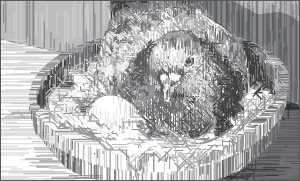 Illustration of a bird in a nest.